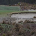 16th_green_across_scrub