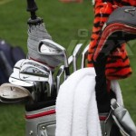tiger witb