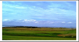 Muirfield View