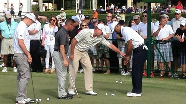 stricker and woods