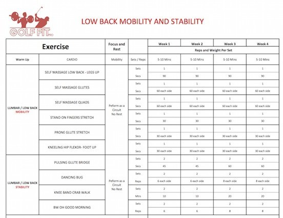 Low Back Mobility and stability