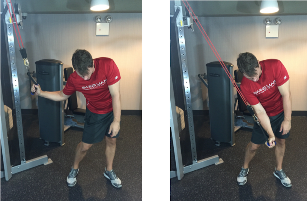 recipe: gym exercises for golfers [25]