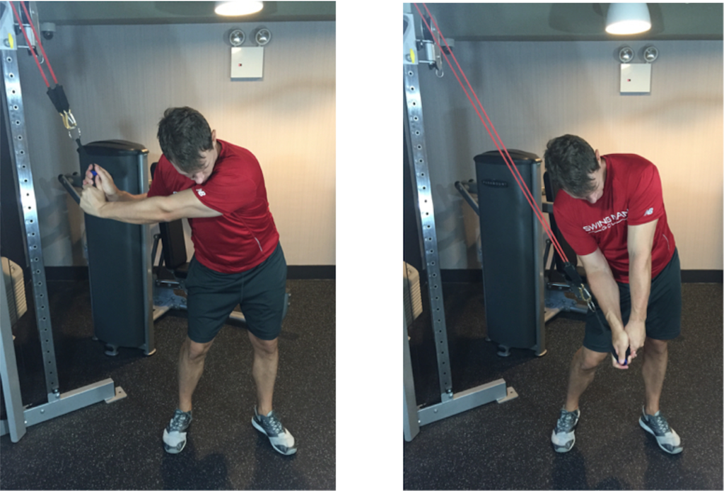 Workout For Golfers In The Gym – Berry Blog