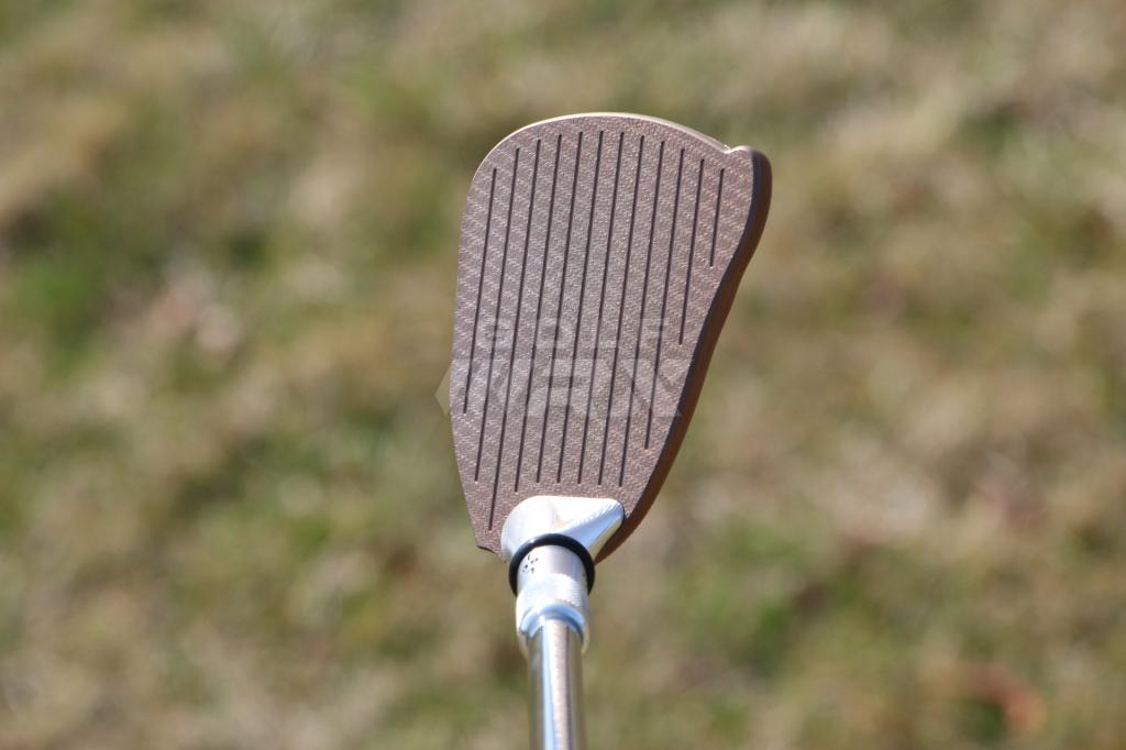Bruce_Sizemore_MORE_wedges_address
