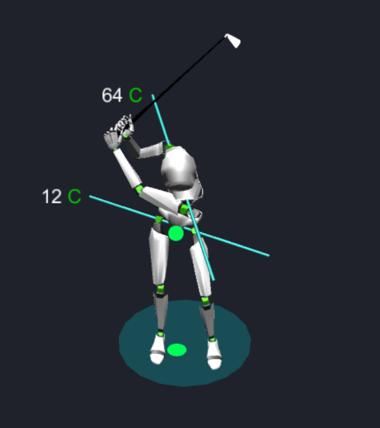 Short Swing