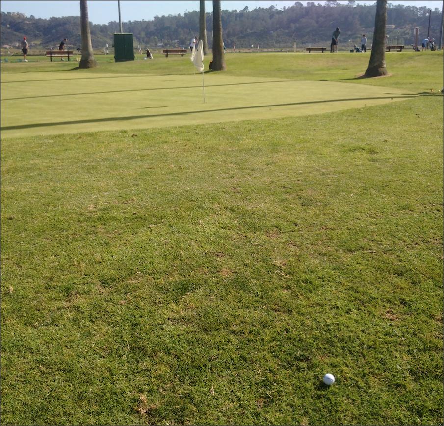 scoring practice pitch, using the 80BREAKR golf scorecard app