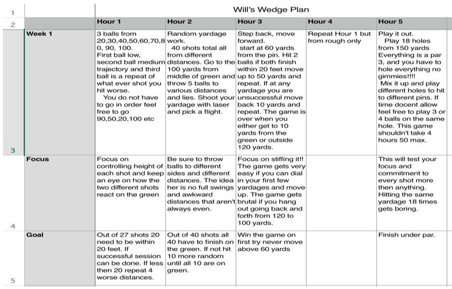Gaucher_Will_Wedge_Plan