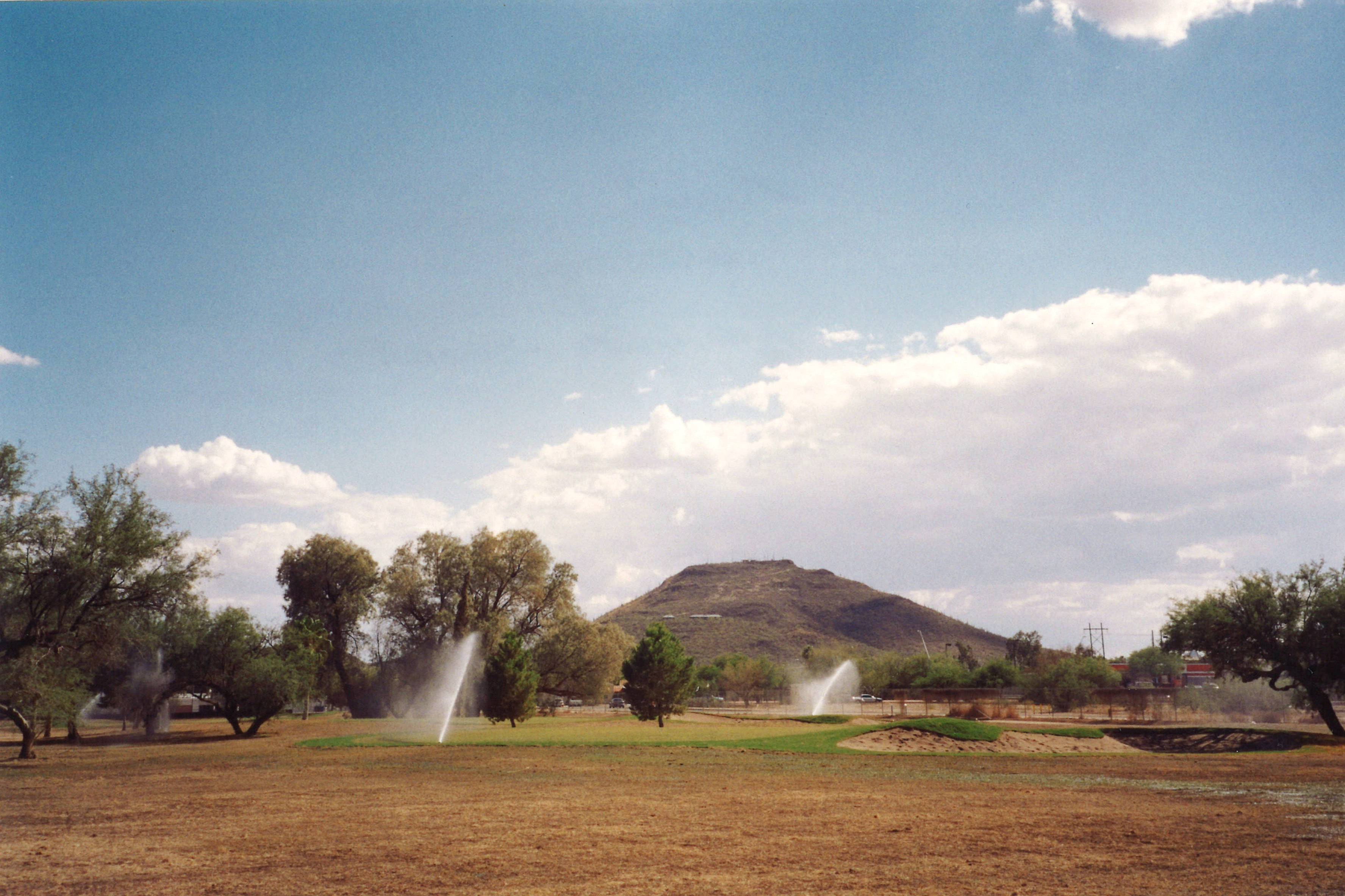 El Rio Tucson #12 Growin
