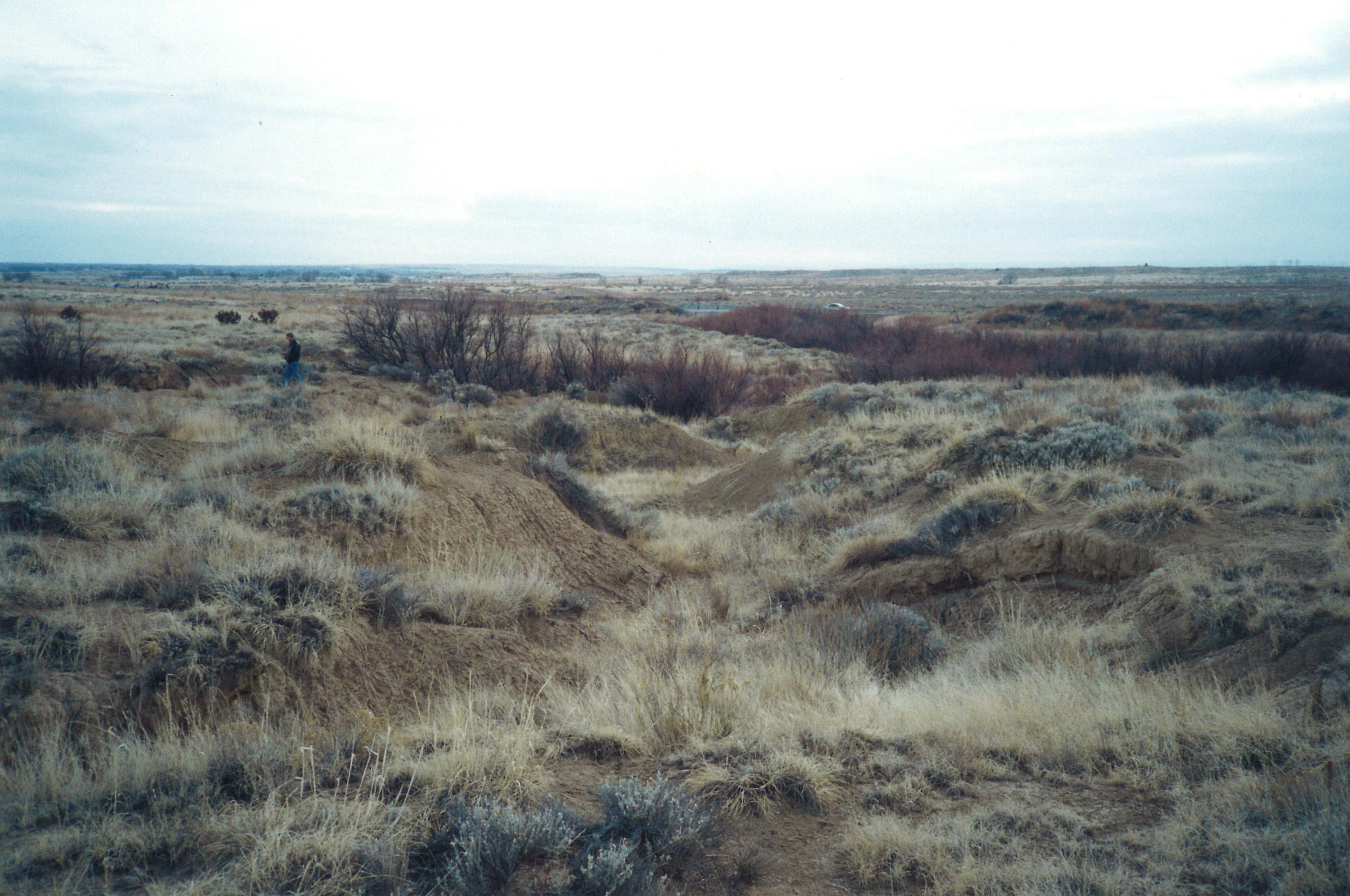 TFT Pueblo EX Site par3
